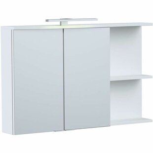 Somersall 90cm X 57cm Free Mounted Cabinet By Ebern Designs
