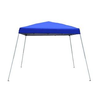 Azure Sky Easy Folding 8 Ft. W x 8 Ft. D Metal Pop-Up Canopy