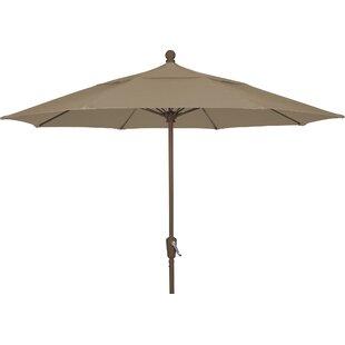 Norval Terrace 8' Market Umbrella by Freeport Park