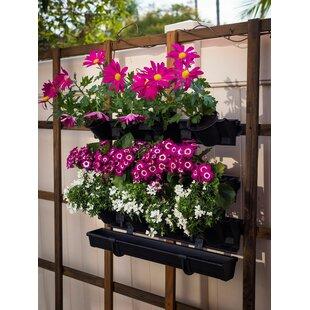 Picture Plastic Vertical Garden