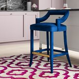 Amabilia Bar & Counter Stool by Everly Quinn