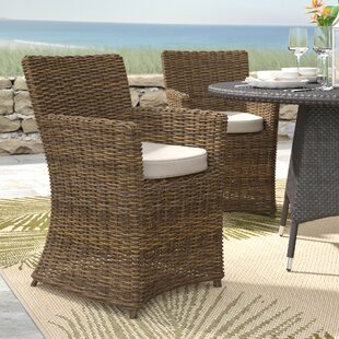 Camryn Patio Dining Chair with Cushion (Set of 2)