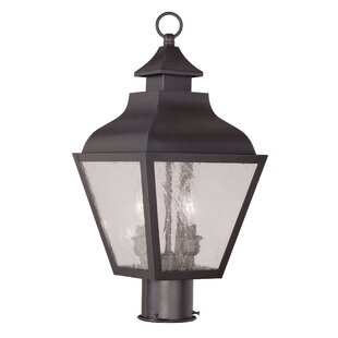 Where buy  Santillo Outdoor 2-Light Lantern Head By Alcott Hill
