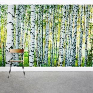 Spring Birch Tree Forest 8 X 144 3 Piece Wall Mural