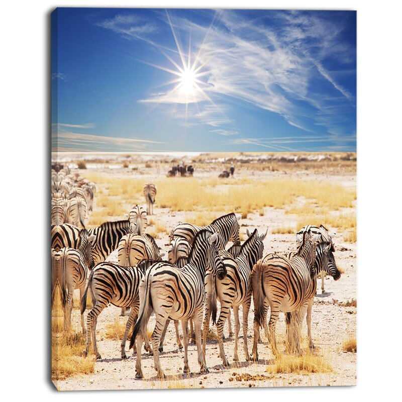Designart Beautiful Herd Of Zebra On Bright Day Photographic Print On Wrapped Canvas Wayfair