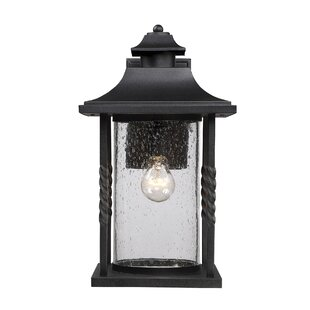 Barrow 1-Light Outdoor Wall Lantern