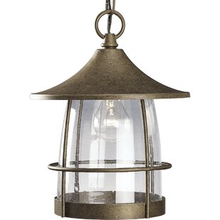 Bargain Triplehorn 1-Light Clear Hanging Lantern By Alcott Hill