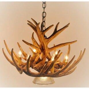 Millwood Pines Winifred 7-Light Novelty Chandelier