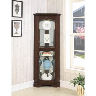 Darby Home Co Braintree Lighted Curio Cabinet