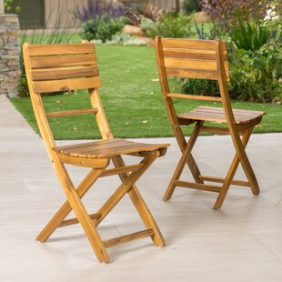 Carthage Folding Patio Dining Chair (Set of 2)