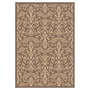 Blackburn Brown Indoor/Outdoor Area Rug