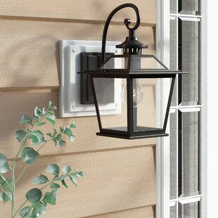 Bruggeman 1-Light Outdoor Wall Lantern
