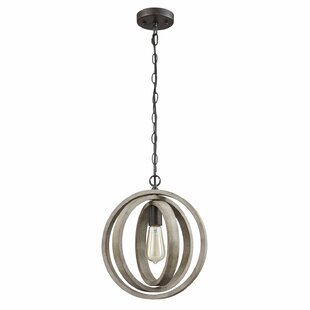 Gracie Oaks Adame Modern Rustic 1-Light Globe Pendant