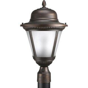 Searching for Triplehorn 1-Light LED Lantern Head By Alcott Hill