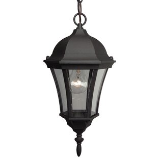 Best Reviews Oswego 1-Light Outdoor Pendant By Charlton Home