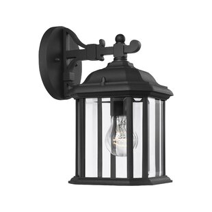 Burtt Outdoor Wall Lantern