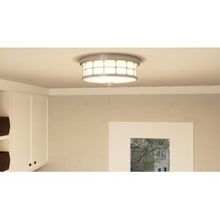 Winston Porter Fostoria 2-Light Flush Mount