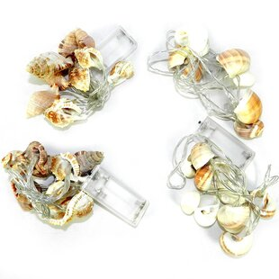 Entrada Seashell 4.42 ft. 10-Light Novelty String Lights (Set of 4)