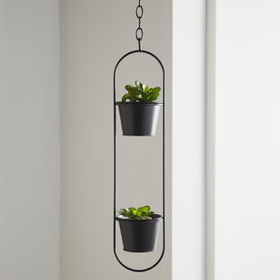 Spence Hanging Basket By Brambly Cottage