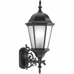 Triplehorn 1-Light Outdoor Medium Sconce by Alcott Hill