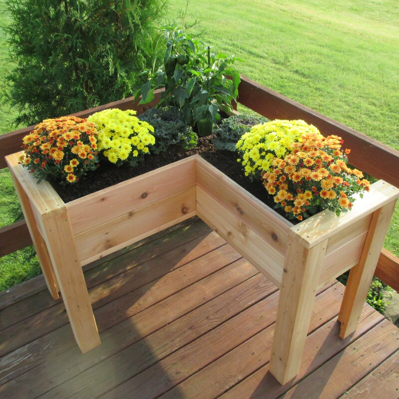 Elevated 1.5 Ft X 3.5 Ft Cedar Raised Garden