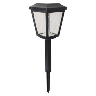 Jiawei Technology Duracell 2-Light Pathway Light (Set of 2)