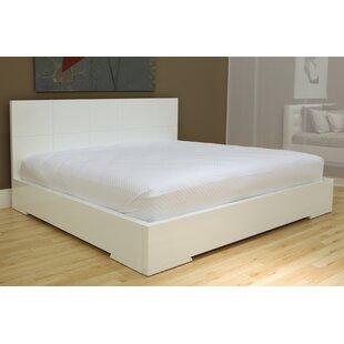 Orren Ellis Salia Panel Bed