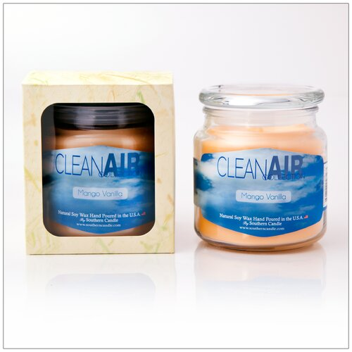 Southerncandleclassics Clean Air Cinnaberry Scented Jar Candle Wayfair