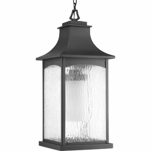 De Witt 1-Light Hanging Lantern