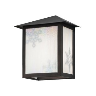 Reviews 1-Light Outdoor Flush Mount By Meyda Tiffany
