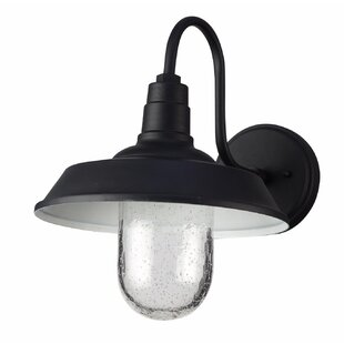 Read Reviews Burney 1-Light LED Outdoor Barn Light By Longshore Tides