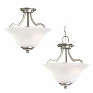 Darby Home Co Bushmills 2-Light Bowl Pendant