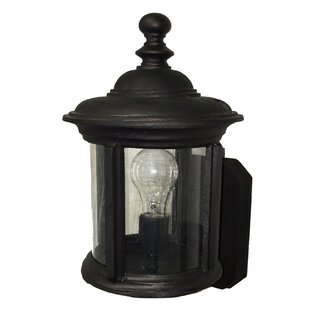 Alcott Hill Perales 1-Light Outdoor Sconce
