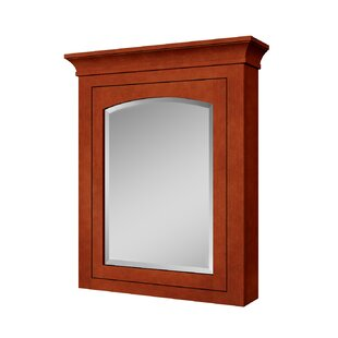 Shopping for Expressions 27 x 32 Surface Mount Medicine Cabinet By Sunnywood