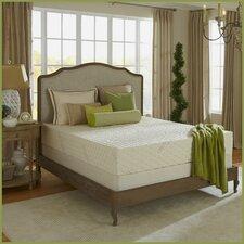 Natural Bliss 6 Medium Firm Latex Mattress by Plush Beds