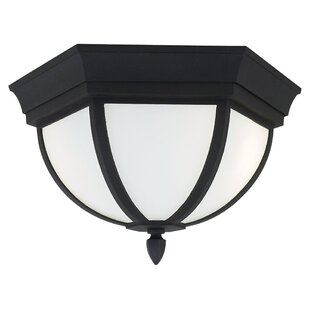 New Style Vi 2-Light Outdoor Flush Mount By Gracie Oaks