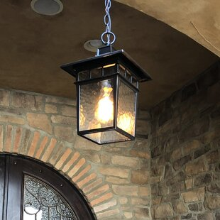Reviews Ousley 1-Light Outdoor Hanging Lantern By Bloomsbury Market