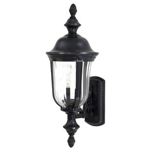 Great Outdoors by Minka Morgan Park 2-Light Outdoor Sconce