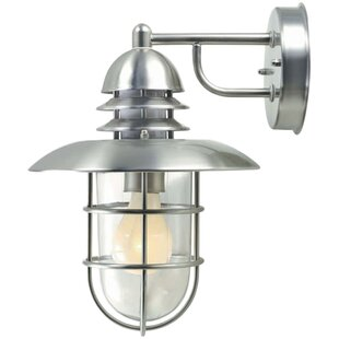 Clarke 1-Light Outdoor Wall Lantern