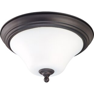 Charlton Home Engebretson 2-Light Outdoor Flush Mount