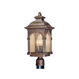 Browner Outdoor 3-Light Lantern Head by Fleur De Lis Living