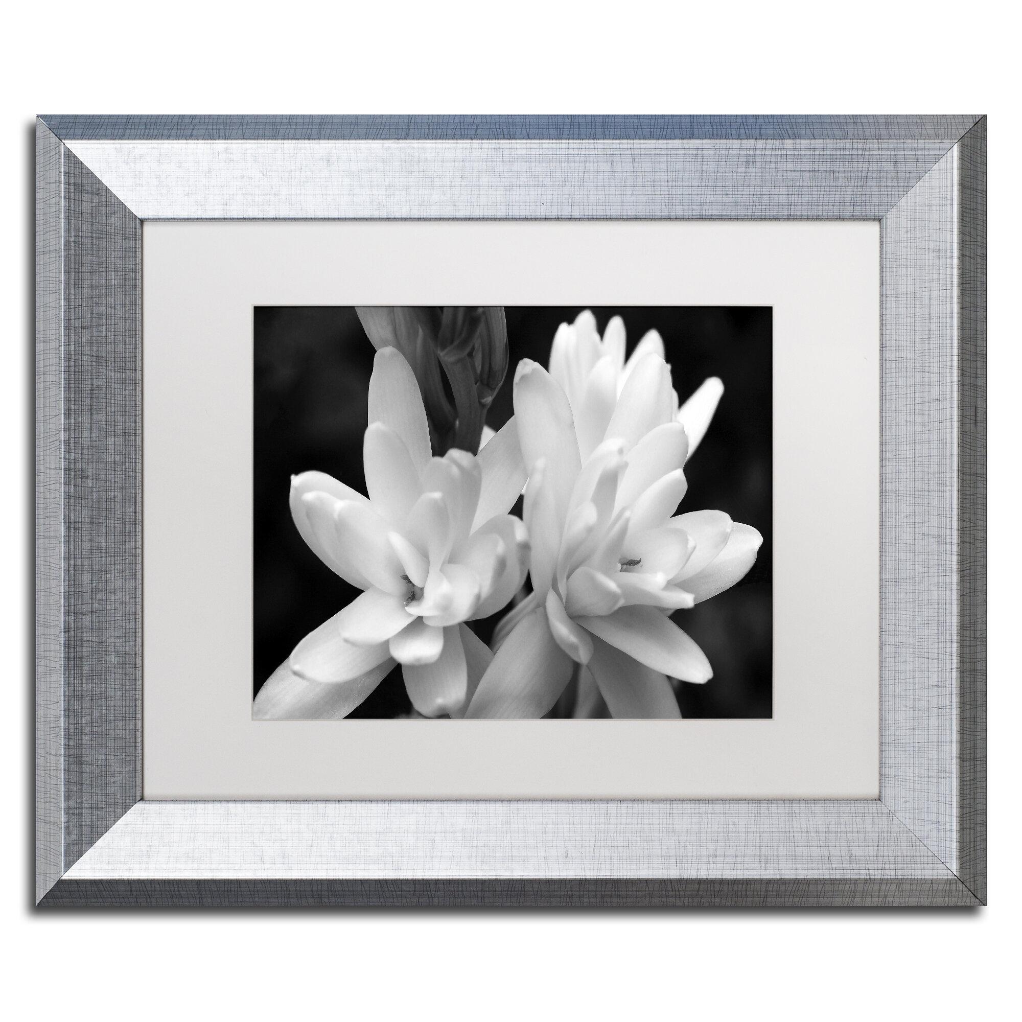 Latitude Run Tuber Rose In Black And White Framed Photographic Print Wayfair