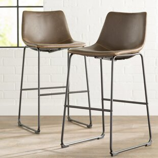 Bamey Vintage Bar & Counter Stool (Set of 2) by Trent Austin Design