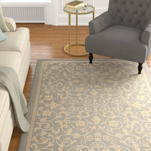Santangelo Natural/Gray Indoor/Outdoor Area Rug