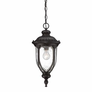 Fleur De Lis Living Angie 1-Light Outdoor Hanging Lantern