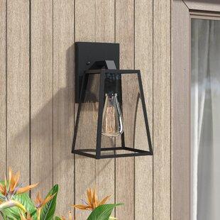 Brill Outdoor Wall Lantern by Mercury Row