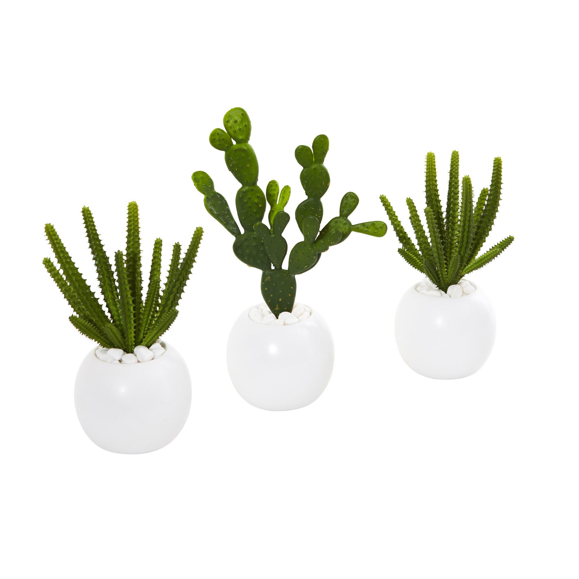 Primrue 3 Piece Artificial Cactus Plant In Decorative Vase Set Wayfair