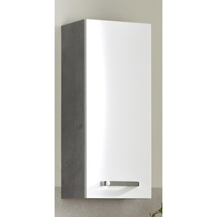 Hanau 30 X 70cm Wall Mounted Cabinet By Quickset