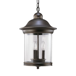 Brettany 3-Light Outdoor Hanging Lantern