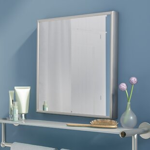 Latitude Run Panel Bathroom/Vanity Mirror
